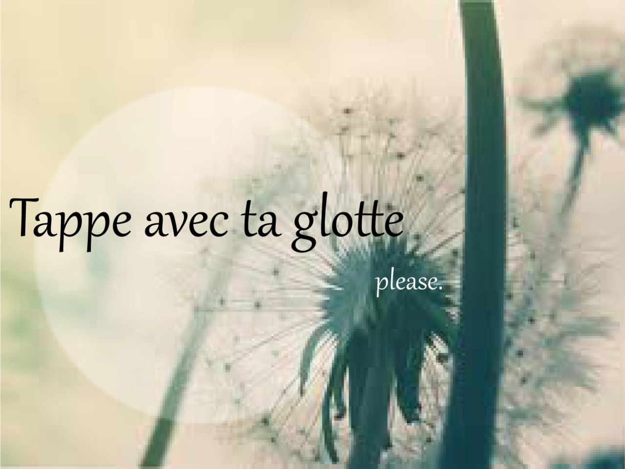 Tape avec la glotte, please.Merci à Roygbivf
