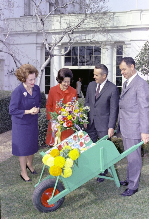 lbjlibrary:  February 16, 1967. Lady Bird Johnson and Mary Lasker accept on behalf of their beautification program a surprise donation of flower seeds to be used in Washington, DC school grounds, in a presentation at the Jacqueline Kennedy Garden of the White House.  LBJ Presidential Library photo #C4560-20a, public domain.   That's one classy wheelbarrow!