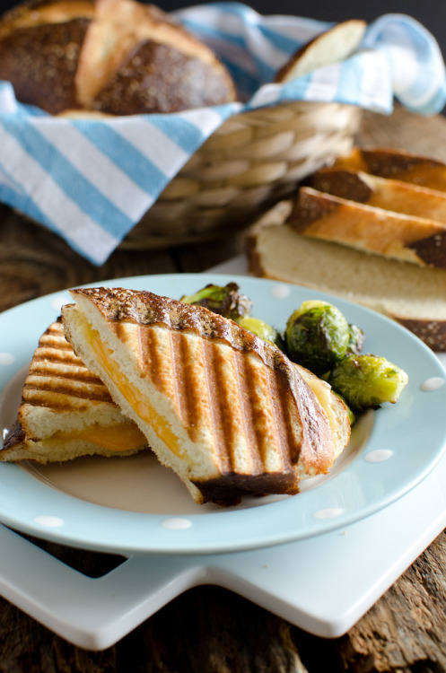 neekaisweird:  Grilled Cheese Panini on Pretzel Bread (by Seeded at the Table)