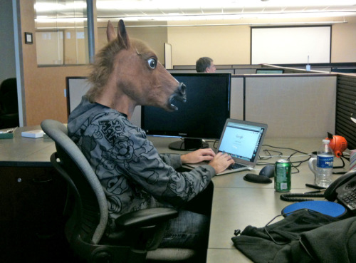 Just an average day here at the www.headstandmedia.com offices.