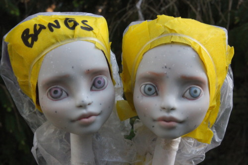 feralworks:  Doll Commission progress. They are a twin set of Rochelles.  oh my gosh, they are coming along so cute!! (/o3o)/