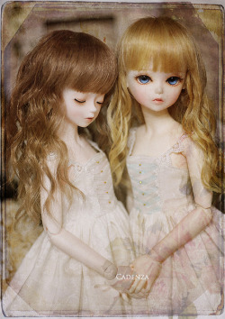 bjd-resinrome:  星&糖 by abenohiya on Flickr.