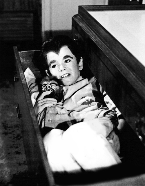 vintagegal:  Butch Patrick as Eddie Munster on The Munsters c. 1960s