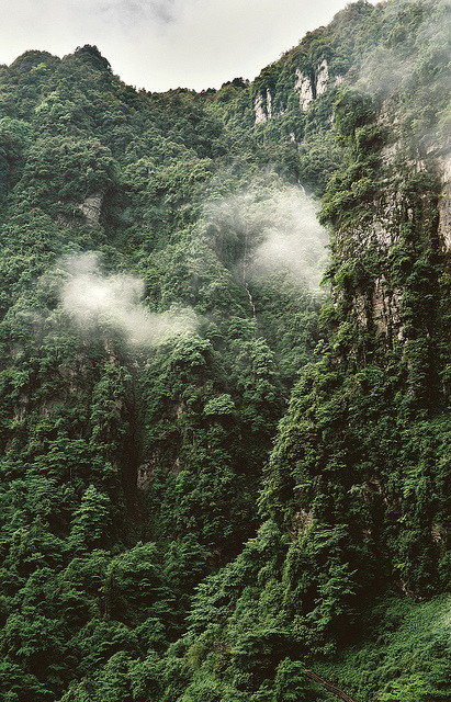 vacants:  Emei Shan I by lylevincent on Flickr.