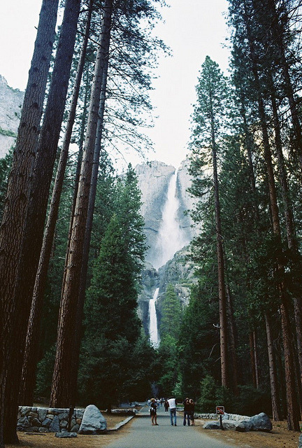 vacants:  Yosemite Falls by Walk Robins on Flickr.