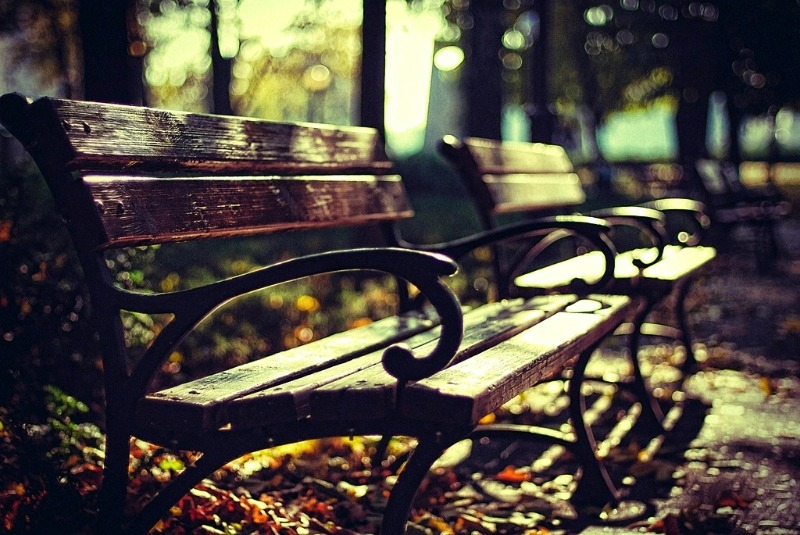 | ♕ |  Autumn bench in Poznan  | by © Erik Witsoe