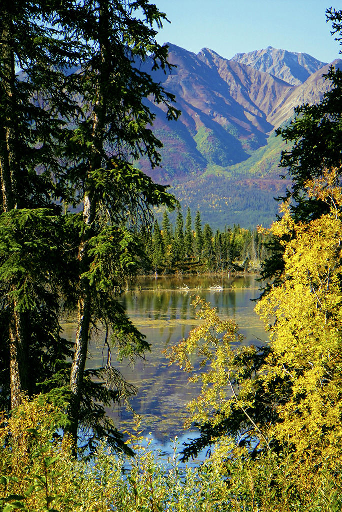 tearingdowndoors:  The Alaskan Outback | JLS Photography - Alaska