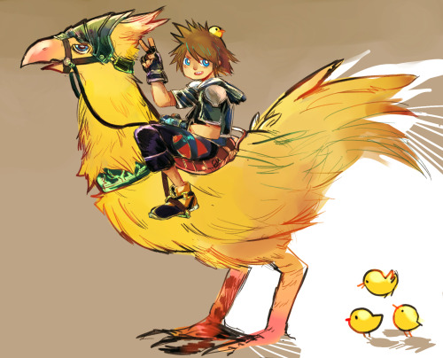 Sora on a chocobo