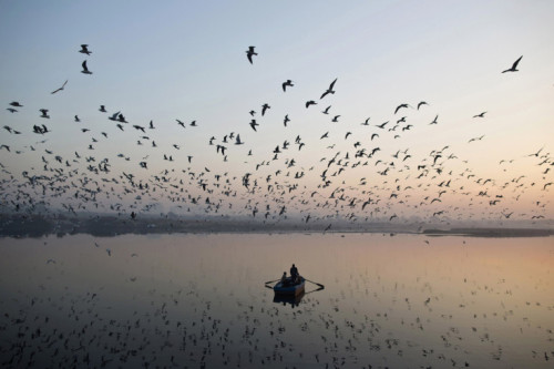 Ahmad Masood—Reuters  Dec. 6, 2012. Migratory birds fly above men rowing a boat on the Yamuna river in the old quarters of New Delhi, India. Read more: http://lightbox.time.com/2012/12/21/2012-the-year-in-silhouettes/#ixzz2FoxfL4IB