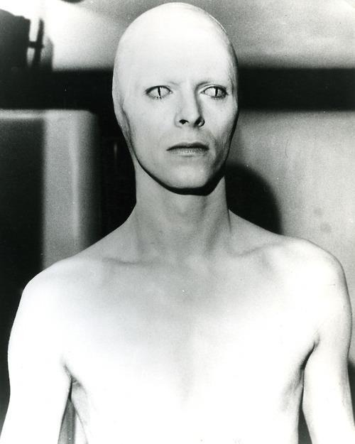 ricsrecordrackcoverart:  DAVID BOWIE IN 'The Man Who Fell to Earth', 1976, directed by Nicolas Roeg www.ricsrecordrack.com