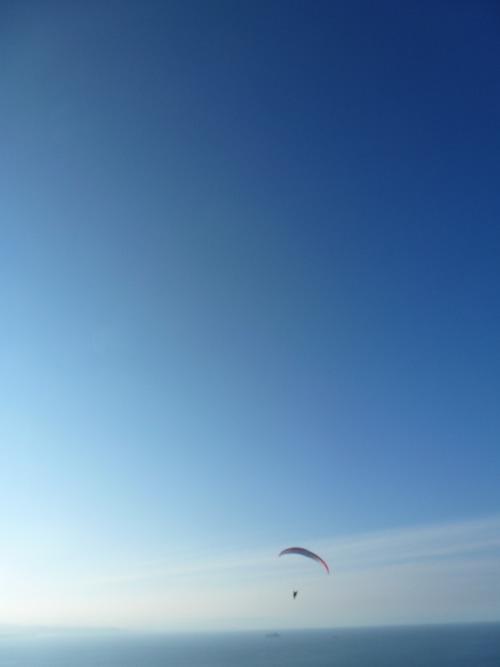 hvnger: A Man Paragliding Off Mt Maunganui, New ZealandTaken by me