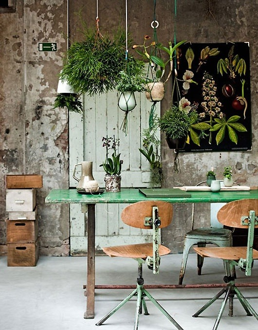 myidealhome:   botanical inspiration (via pinterest)