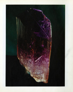 mineralia:  Kunzite from Brazil by World's Finest Minerals and Crystals
