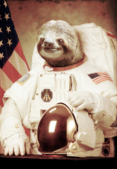 Sloth Astronaut by Bakus