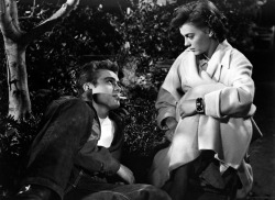 talent-only:  James Dean and Natalie Wood Rebel Without a Cause | 1955