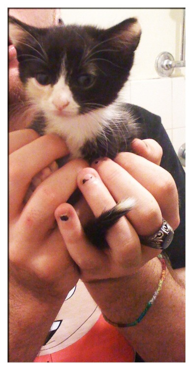So this is my boyfriend holding our kitten ^_^