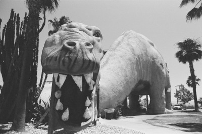 Several months ago I visited the famous El Cabazon Dinosaurs (as seen in Pee Wee's big Adventure, Paris, Texas, etc). Now I finally got my black and white photos from that trip developed! Enjoy the dinosaurs…