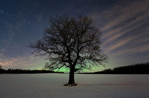Northern lights in Belarus.