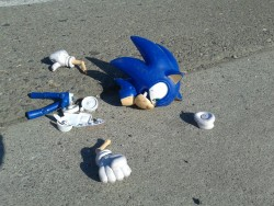 sonic classic gotta go fast sonic the hedgehog destroyed garbage