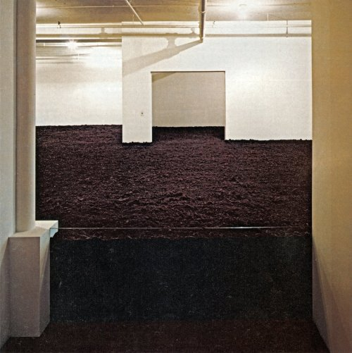 Walter De Maria, New York Earth Room, 1977