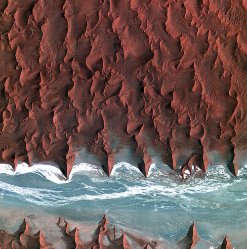 terra-mater:  Earth from space: Dune 45  The Namib is the oldest desert in the world, stretching over 2000 km along Africa's southwestern coast from Angola, through Namibia to South Africa. Sand dunes dominate the desert – some reaching over 300 m in height. The blue and white area is the dry river bed of the Tsauchab – which only sees water following rare rainfall in the Naukluft Mountains to the east. Black dots of vegetation are concentrated close to the river's main route, while salt deposits appear bright white. Running through the river valley, a road connects Sossusvlei to the Sesriem settlement. At the road's 45th kilometre, seen at the lower-central part of the image, a white path shoots off and ends at a circular parking area at the base of a dune. This is Dune 45, a popular tourist stop on the way to and from Sossusvlei.  Image credit: KARI/ESA