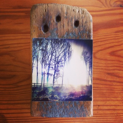 "Up for grabs. 4x4"" on driftwood"