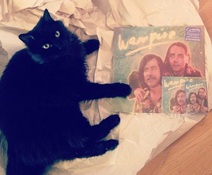 HAPPY RELEASE DAY! Our new album, Curiosity, is out today! My cat already got a copy on CD, LP and cassette…our biggest fan.   Here's where you can get the album:  Polyvinyl - http://bit.ly/10Flm3qiTunes - http://bit.ly/15JQXJ9Amazon - http://amzn.to/13ilwi5  And you can stream it here:  Rdio - http://rd.io/x/QVdhUSJ21F4/Spotify - http://spoti.fi/13ijP4d  -Wampy