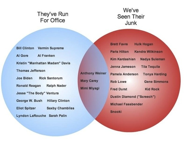 "newsweek:  A helpful Venn diagram of politicians who have run for office and people whose ""junk"" we have seen."