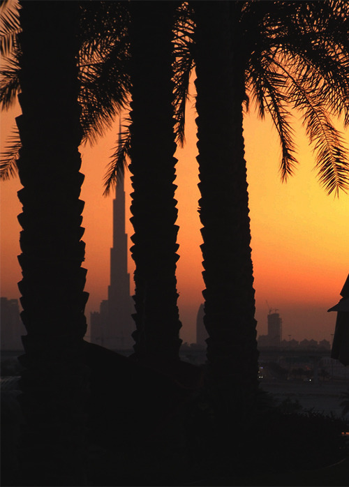 Dubai Sunset via Rachel Stout