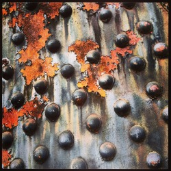 This is a close up picture that I took recently of the rivets and rust on the Steel Bridge here in PDX…..  :D
