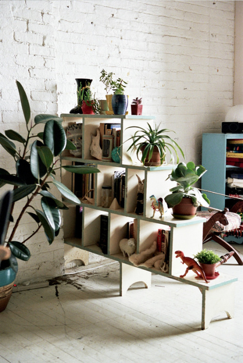 "Bookshelf with houseplants, home studio of textile design artist, Isabel Wilson, Brooklyn, NY. ""I think it's essential to take in your surroundings, to collect and build a unique visual library. I collect things to allow myself to express the truth about my unconscious mind. I find that my collections inform my work and remind me of what I'm attracted to."" ~Isabel WilsonPhoto: Brian W. Ferry for Freunde von Freunden."