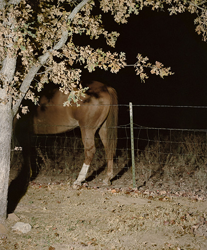 "steventylerlandes:  Untitled, 11"" x 14"", Archival Inkjet Print, 2012 New work."