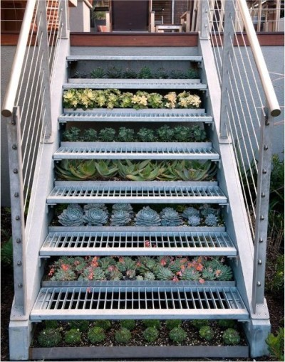 gardensinunexpectedplaces:  Succulents under stairs. (via houzz)