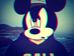 Mickey Mouse Swag !