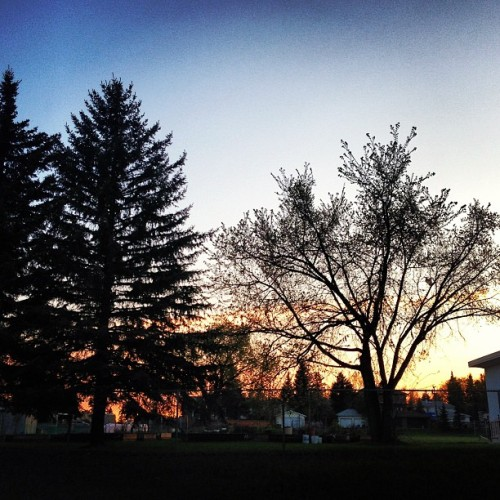 brenam:  #waitingforthebus #sunset #sky