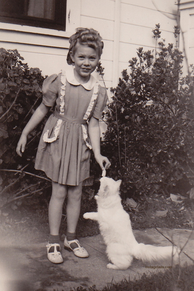 """ Please enjoy these delightful vintage photos of girls and cats. Cats are a Girl's Best Friend "" porque no hay nada como un gato. amarlos."