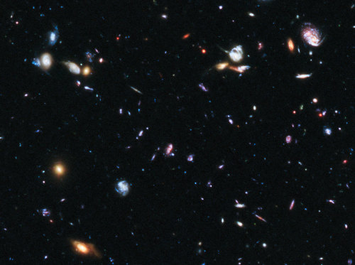 distant-traveller:  Supernova Primo in the Hubble Ultra Deep Field  This image shows part of the Hubble Ultra Deep Field, a region where astronomers confirmed the most distant Type Ia supernova yet observed.  Image credit: NASA, ESA, A. Riess (STScI and JHU), and S. Rodney (JHU)