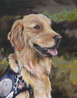 Meet Boomer, my most recent 'pet portrait'. He isn't really a pet though… he is an assistance dog. The most amazing assistance dog. I have had the honor of following him on facebook for over a year now and he and 'his guy' amaze me with what he does and what he is called on to do. We all need to do what we can to ensure that everyone who needs a Boomer can get one. It's my new 'pet' cause.