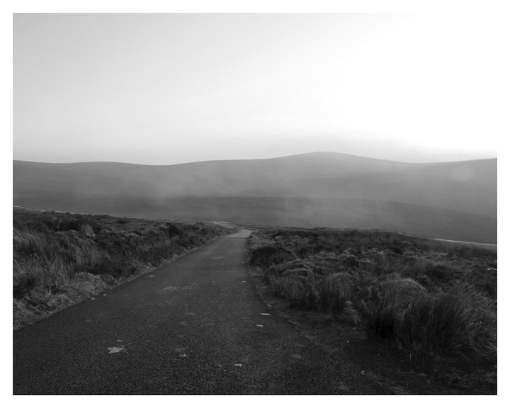 caitlindegreef:  Dublin Mountains