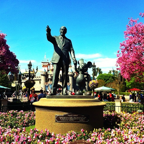"""Partners."" #mickey #mickeymouse #walt #waltdisney #disney #statue #disneyland #dca #ca #california #anaheim #mouse #partners #tree #pink #childhood #now #greatday  (at The Hub and Partners Statue)"