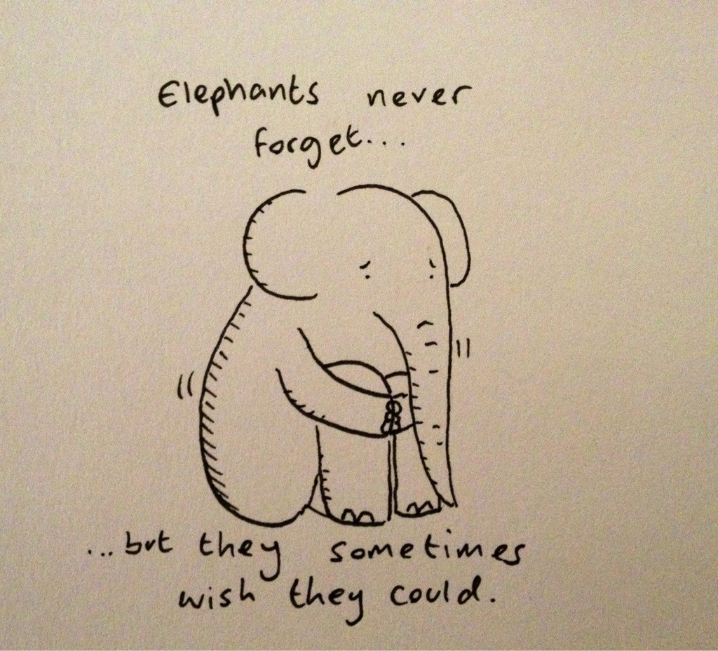 cute-overload:  Elephants never forget (doodle) http://cute-overload.tumblr.com