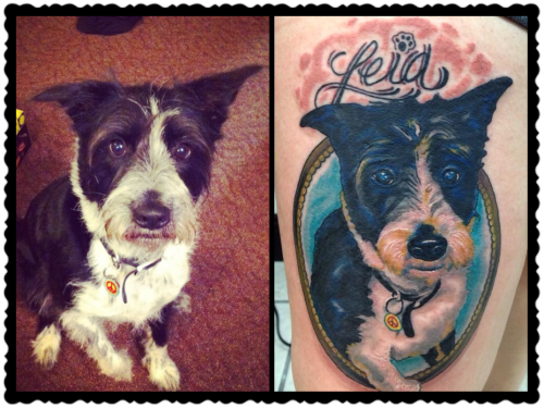 fuckyeahtattoos:  Portrait of my dog, Leia. Done by Josh Goor at Gato Negro Tattoo in Alton, Il
