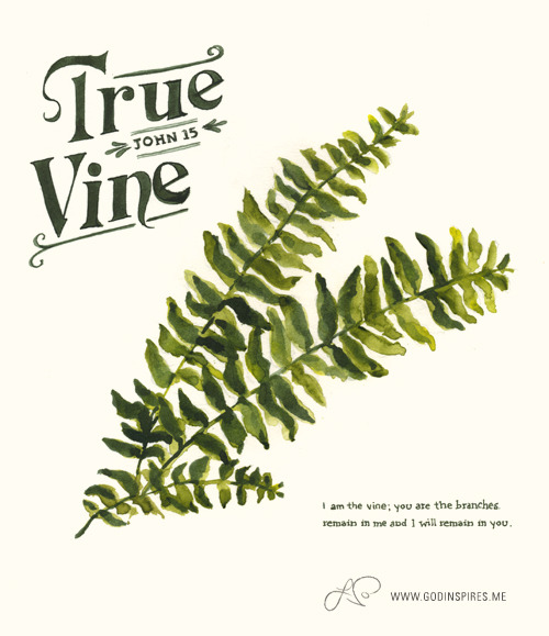 "Painted Verses 34/52 ""I am the true vine; you are the branches...remain in me, and I will remain in you…If a man remains in me and I in him, he will bear much fruit."" John 15 Buy print on Etsy →"