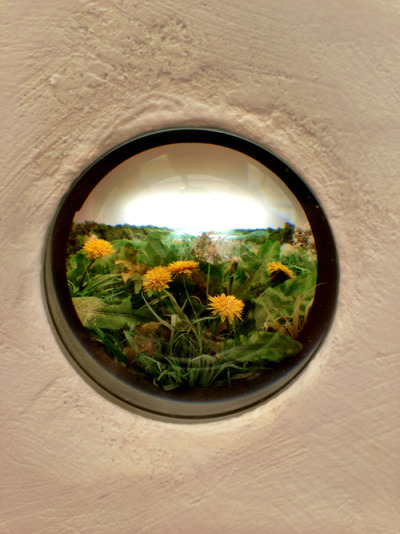 The artist created peep holes with extremely detailed miniature landscapes using tweezers.