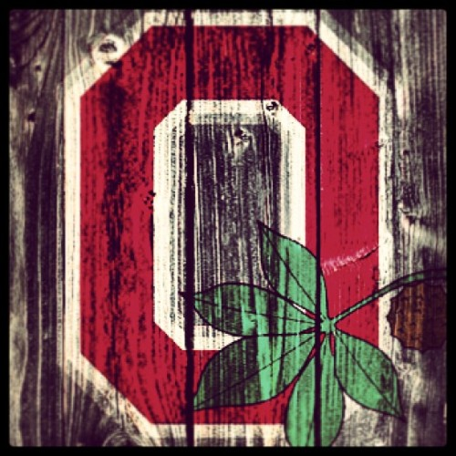 Day 5: go buckeyes! #project365