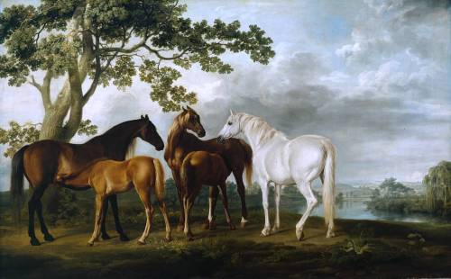 cavetocanvas:  George Stubbs, Mares and Foals in a River Landscape, c. 1763-68 From the Tate Gallery:  The original idea for the frieze-like arrangement of the early mares and foals paintings may have been suggested by engravings by Matham after Collaert and others, which show animals as if on a stage in the foreground, against generalised backgrounds. For most of his mares and foals subjects Stubbs almost certainly drew the animals from life, perhaps first making numerous studies and then carefully arranging them into an ideal composition; however, no such studies have been located. It is known from an unfinished picture in the series that the artist first painted the horses in perfect detail, stretching them across a blank background like the figures in a classical frieze, before carefully inserting the (probably imaginary) landscape into the background. The resulting complex compositional structure demonstrates Stubbs's knowledge of classical principles, gained on a trip to Italy in 1754, as well as his sense of pattern and rhythm. Mares and Foals in a River Landscape utilises a classical composition which gives an overall symmetry and balance to the group, in which the three mares and their foals are placed so as roughly to form a cone, with their rumps marking the perimeter and their heads the apex. The feeding foals are essential to the composition, allowing the spectator's eye to be drawn over the whole group in a slow revolving rhythm.