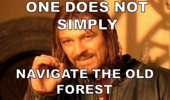 I simply navigated the Old Forest!