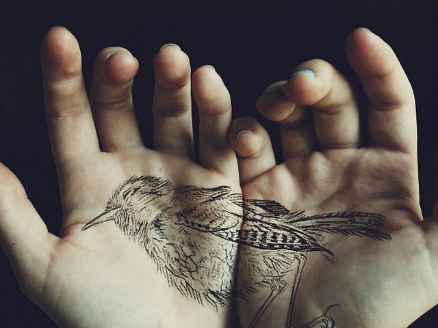fractionally:  Dead bird. by violetvika on Flickr.