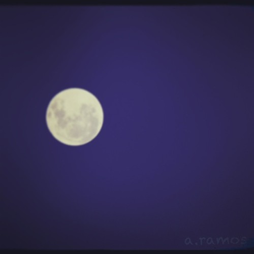 Fly Me to the #moon 🌝