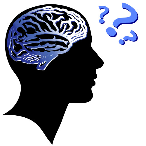 "Who Decides in the Brain? Whether in society or nature, decisions are often the result of complex interactions between many factors. Because of this it is usually difficult to determine how much weight the different factors have in making a final decision. Neuroscientists face a similar problem since decisions made by the brain always involve many neurons. Working in collaboration, the University of Tübingen and the Max Planck Institute for Biological Cybernetics, supported within the framework of the Bernstein Network, researchers lead by CIN professor Matthias Bethge have now shown how the weight of individual neurons in the decision-making process can be reconstructed despite interdependencies between the neurons. When we see a person on the other side of the street who looks like an old friend, the informational input enters the brain via many sensory neurons. But which of these neurons are crucial in passing on the relevant information to higher brain areas, which will decide who the person is and whether to wave and say 'hello'? A research group lead by Matthias Bethge has now developed an equation that allows them to calculate to what degree a given individual sensory neuron is involved in the decision process. To approach this question, researchers have so far considered the information about the final decision that an individual sensory neuron carries. Just as an individual is considered suspicious if he or she is found to have insider information about a crime, those sensory neurons whose activity contains information about the eventual decision are presumed to have played a role in reaching the final decision. The problem with this approach is that neurons – much like people – are constantly communicating with each other. A neuron which itself is not involved in the decision may simply have received this information from a neighboring neuron and ""joined in"" the conversation. Actually, the neighboring cell sends out the crucial signal transmitted to the higher decision areas in the brain. The new formula that has been developed by scientists addresses this by accounting not just for the information in the activity of any one neuron but also for the communication that takes place between them. This formula will now be used to determine whether only a few neurons that carry a lot of information are involved in the brain's decision process, or whether the information contained in very many neurons gets combined. In particular, it will be possible to address the more fundamental question: In which decisions does the brain use information in an optimal way, and for which decisions is its processing suboptimal?"